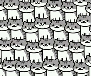 cats and wallpaper image
