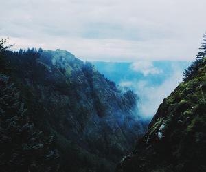 aesthetic, landscape, and oregon image