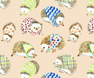 hedgehog, animal, and pattern image