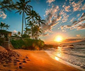 beach, summer, and sun image