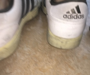 adidas, brown, and old image