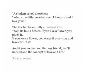 feelings, ilikeyou, and teacher image