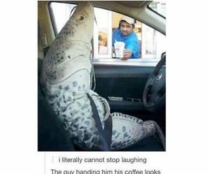 funny and haha image