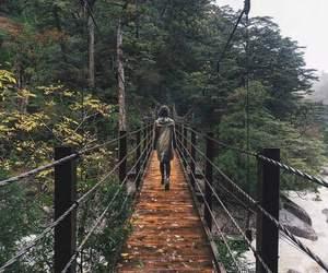 girl, bridge, and nature image
