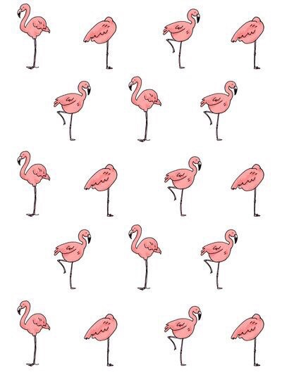 Pink Flamingos Background Discovered By Fr4ncescaa