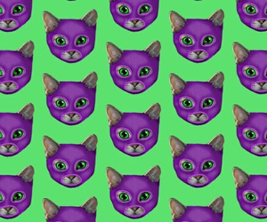 background, cat, and purple image