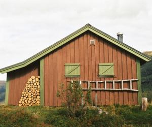 farm, travel, and frankie magazine image