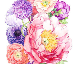 bouquet, peony, and flower watercolor image