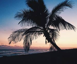 paradise, summer, and sunset image