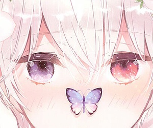 kawaii, anime, and butterfly image