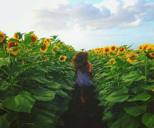 bright, summer, and girl image