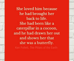 butterfly, him, and love image