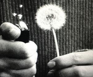 alternative, grunge, and indie image
