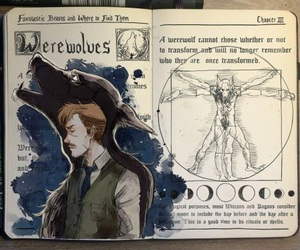 harry potter, werewolf, and remus lupin image
