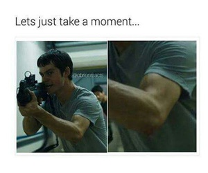dylan o'brien and the maze runner image