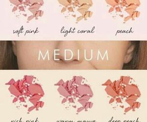 blush and skin image