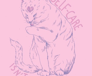 cat, pink, and selfcare image