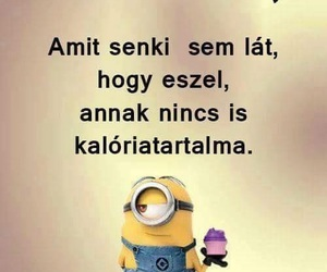 funny, minion, and magyar image