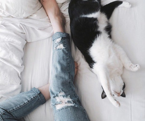 girl, cat, and tired image