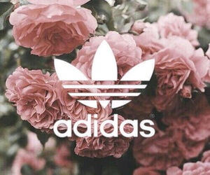 adidas, background, and flowers image