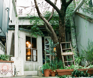 cafe, japan, and seaniap image