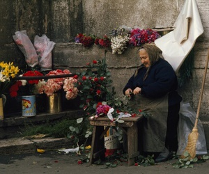 flowers, life, and old image