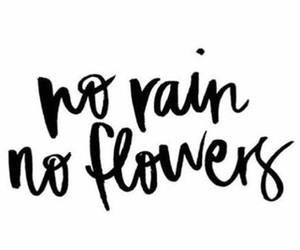 flowers, quote, and rain image