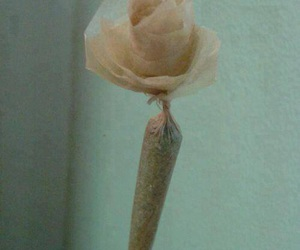 weed, rose, and flower image