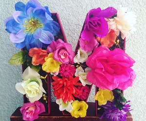 flores, flowers, and handmade image