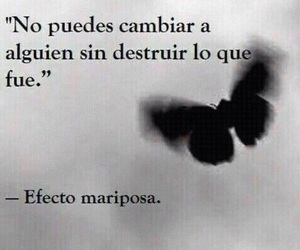 frases, butterfly, and quote image