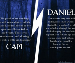 book, daniel, and fallen image