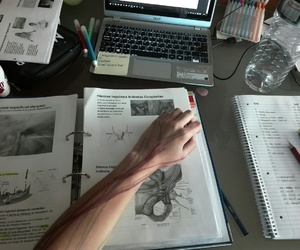 anatomy, coffe, and college image
