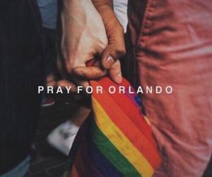 gay, lesbian, and orlando image