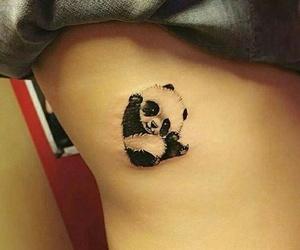art, cool, and panda image