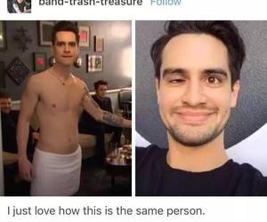 bands, panic at the disco, and funny image