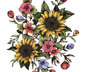 flowers, png, and overlay image