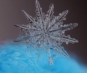 snowflake, blue, and crystal image