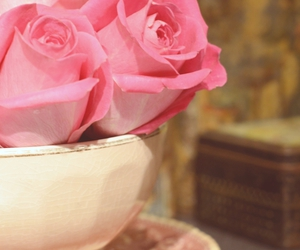 pink, rose, and teacup image