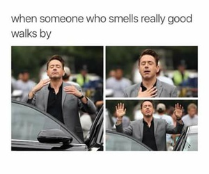 smell, funny, and meme image