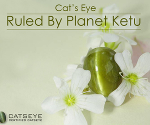 cats eye gemstone and catseye online image