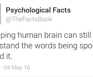brain, fact, and psychological image
