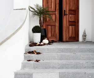 home, house, and door image