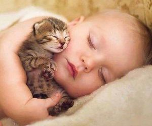 baby, cat, and animal image