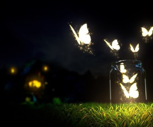 butterfly, serenity, and night image
