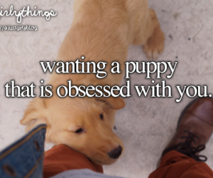 puppy, dog, and just girly things image