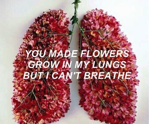 flowers, grunge, and lungs image