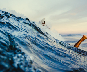 surfing, sea, and summer image