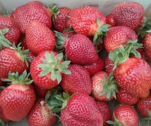 berries, strawberries, and summer image