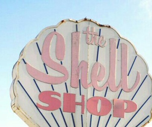 pink, shell, and shop image