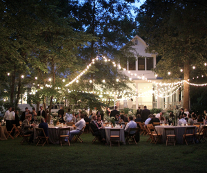 forest, wedding, and wedding dress image